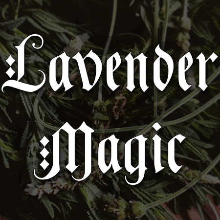 lavender magic, australian witchcraft blog, adelaide witchcraft store, free witchcraft spells, witchcraft supplies, witchcraft blog, spellbox, spells online, online tarot, adelaide tarot reader, wholesale witchcraft