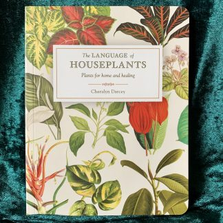 The Language of Houseplants, australian witchcraft supplies, adelaide witchcraft store, free witchcraft spells, witchcraft blog, witchcraft shop